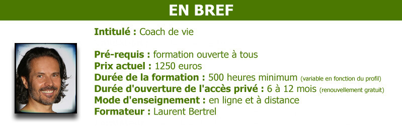 coaching formation distance en ligne de coach de vie. Black Bedroom Furniture Sets. Home Design Ideas